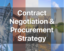 Contract Negotiation & Procurement Strategy