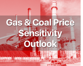 Gas & Coal Price Sensitivity Outlook