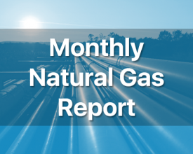 Monthly Natural Gas Report