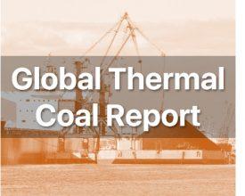 Weekly Global Thermal Coal Report